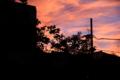 [きまぐれ×フォト]初めて撮った朝焼け─1(2010年7月15日、自宅付近にて)
