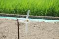 [きまぐれ×フォト]孤独に回る風車。夏ver.(2010年7月23日、富水駅付近にて)