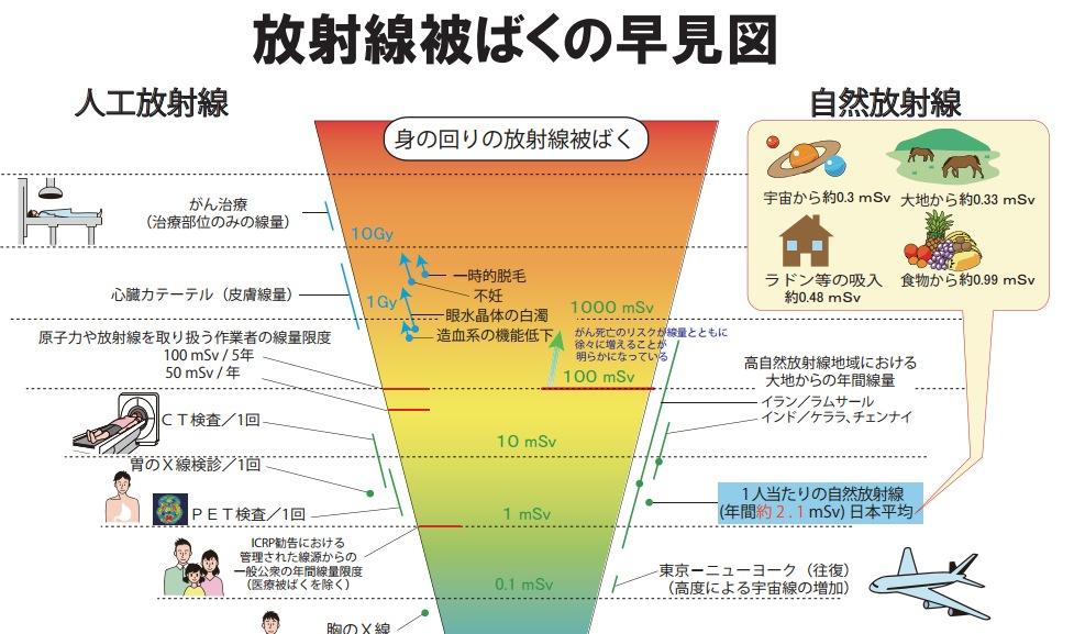 画像:放射線被ばくの早見図