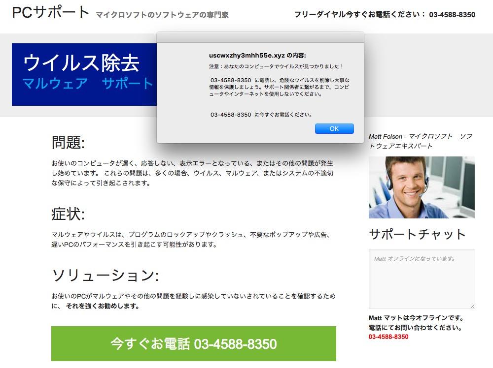 画像:詐欺の可能性が高いサイト