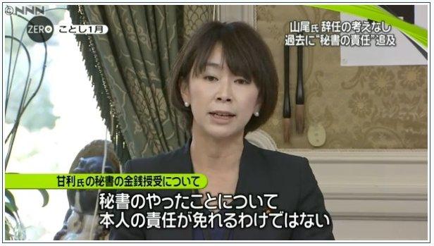 画像:山尾志桜里議員による主張