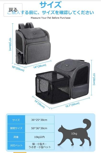 f:id:squarecat:20201205220013j:image
