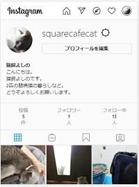 f:id:squarecat:20201215090637j:plain