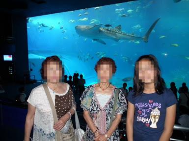 20110603_Churaumi