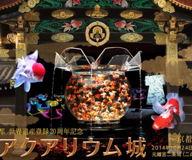 f:id:ssachiko:20141129203821j:plain