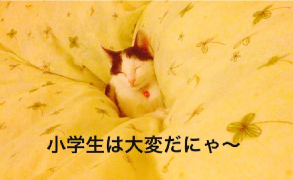 f:id:ssachiko:20151021104011j:image