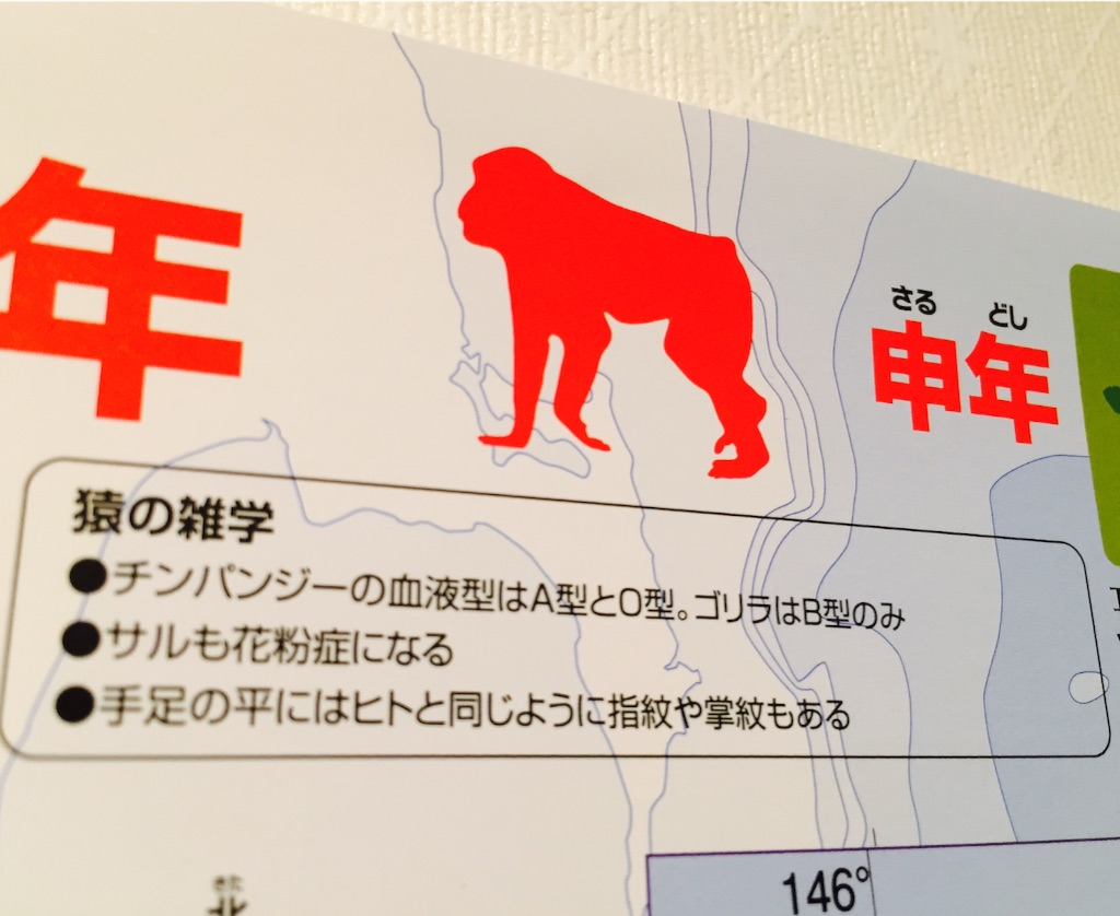f:id:ssachiko:20151208074956j:image