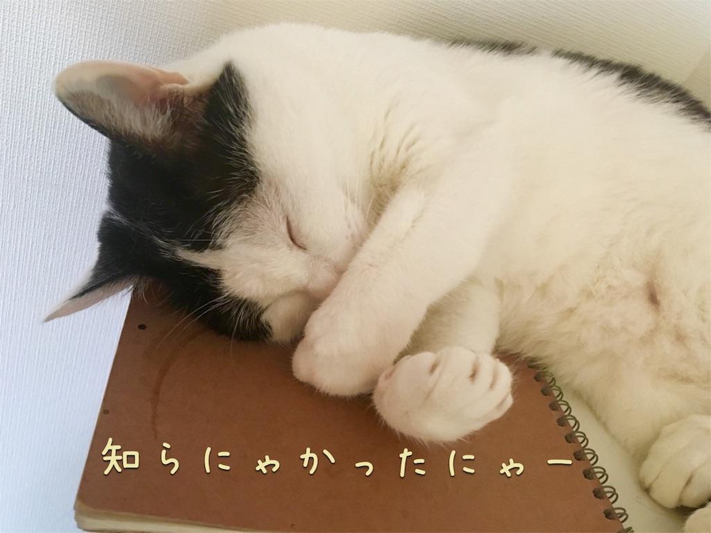 f:id:ssachiko:20160718154018j:image