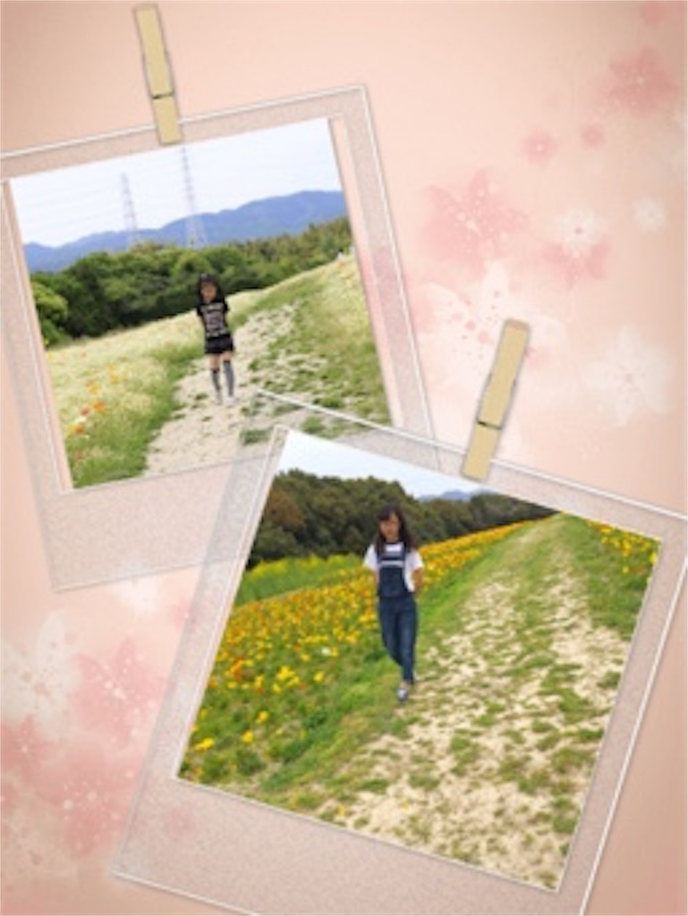 f:id:ssachiko:20170407201348j:image