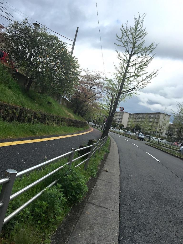f:id:ssachiko:20170419072416j:image