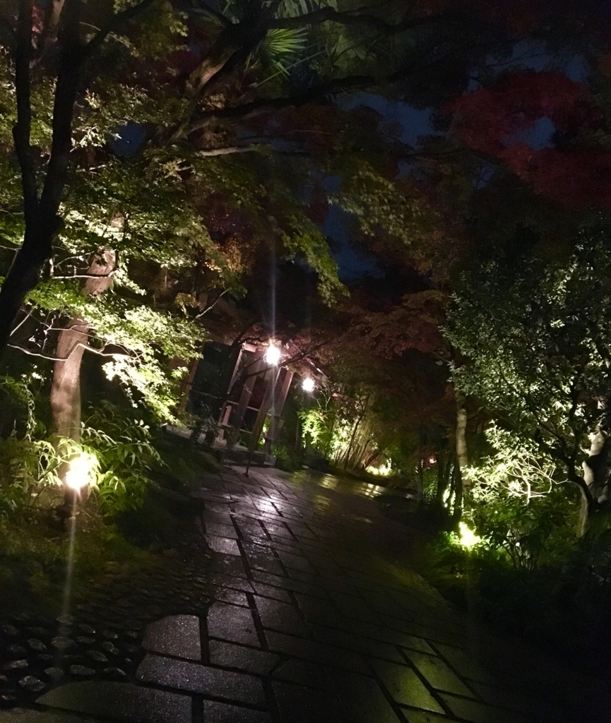 f:id:ssachiko:20171123223530j:plain