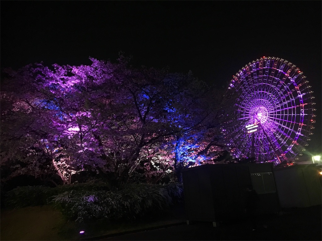 f:id:ssachiko:20180402180604j:image