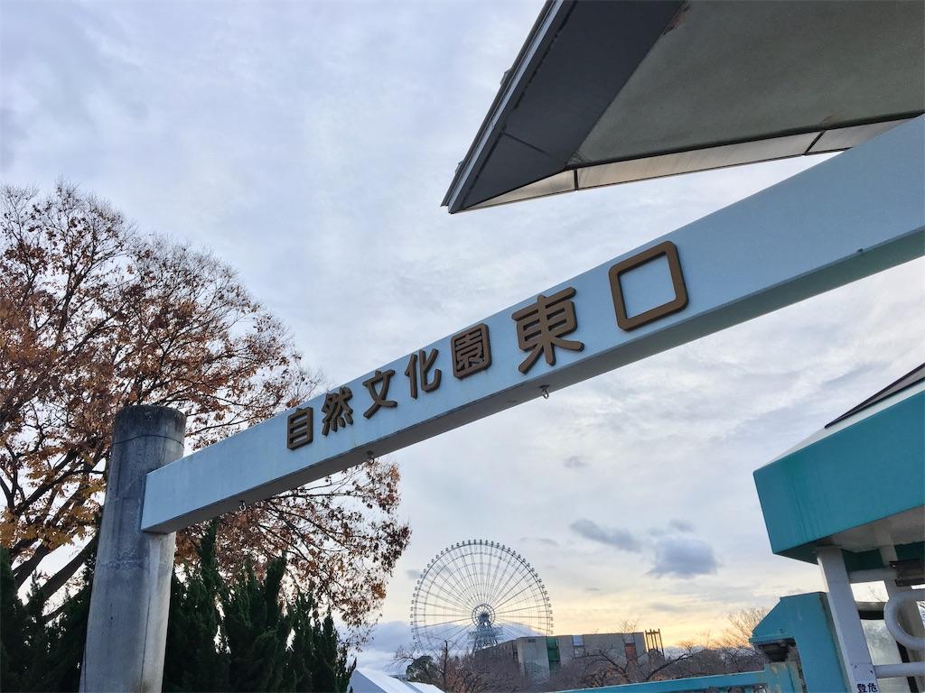 f:id:ssachiko:20181210210855j:image