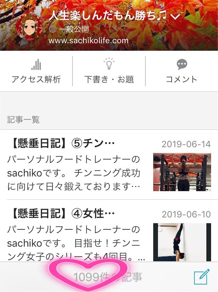 f:id:ssachiko:20190616230544j:image
