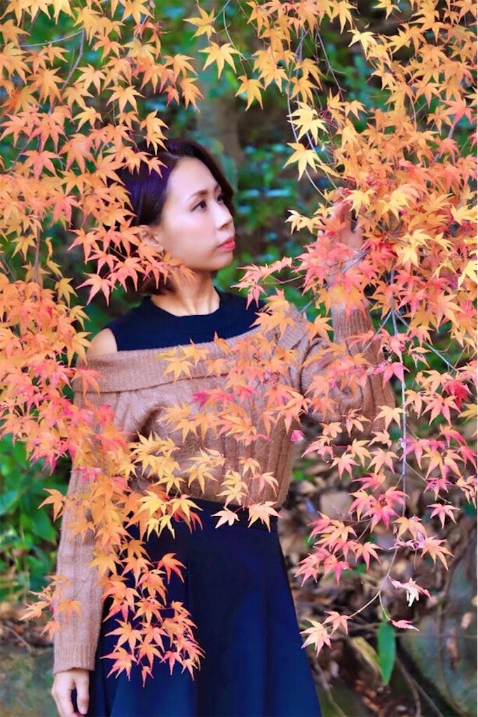 f:id:ssachiko:20191210195944j:image