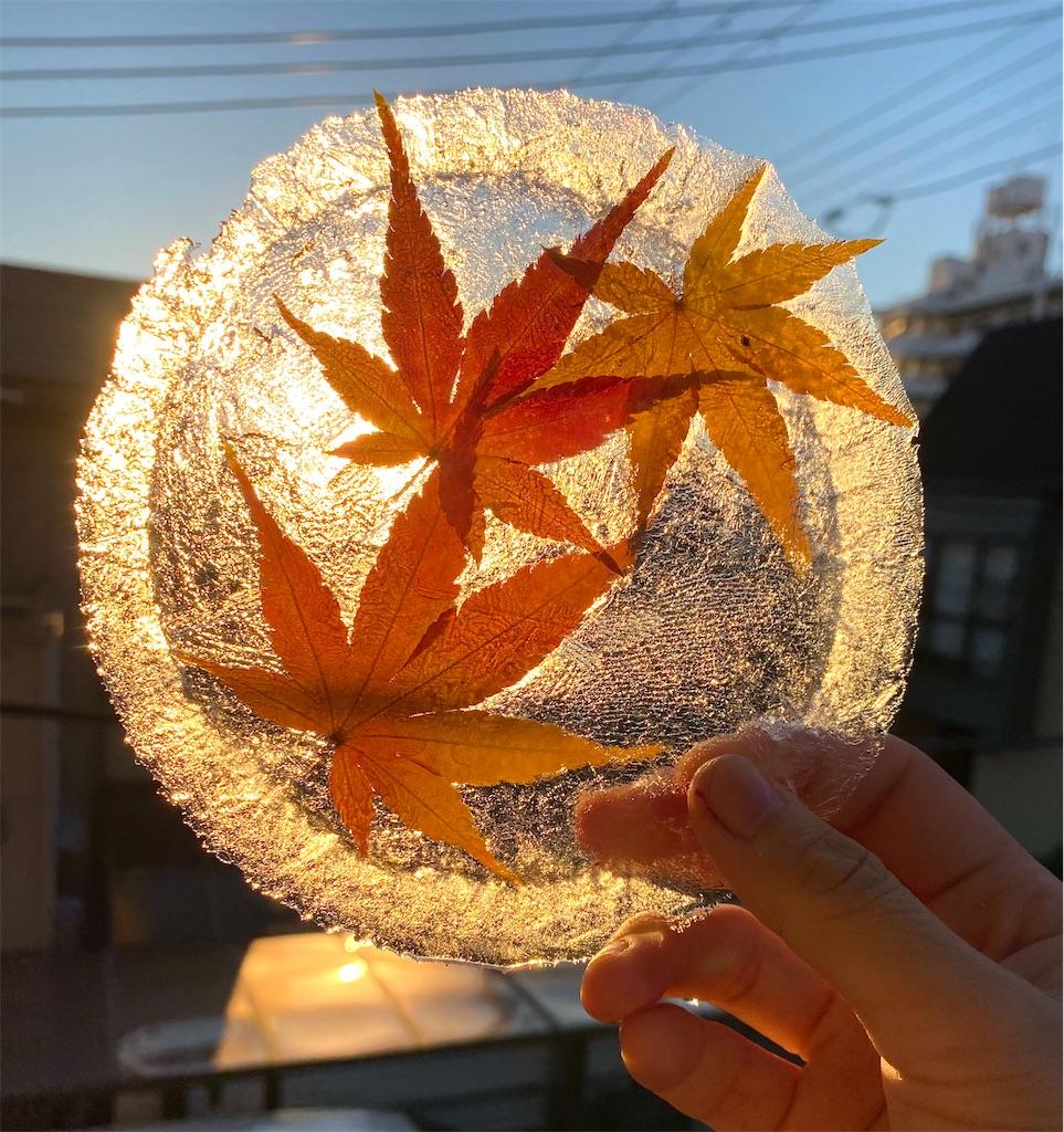 f:id:ssachiko:20201220100253j:image