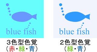 2色型色覚(緑・青)の見え方