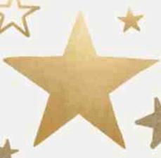 E賞 50 Bonus Stars30,000名様