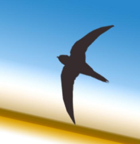 f:id:starflight:20170101191208j:plain
