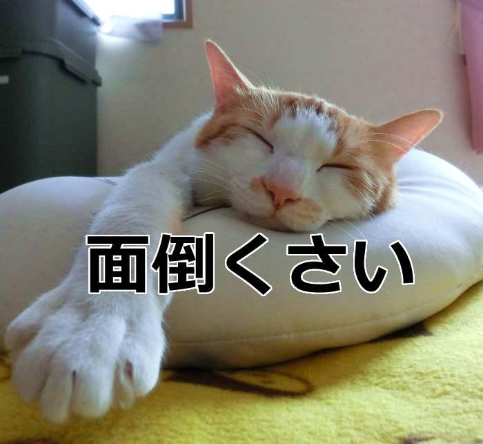 f:id:starskywalk-hiro-yuna:20161015214516j:plain
