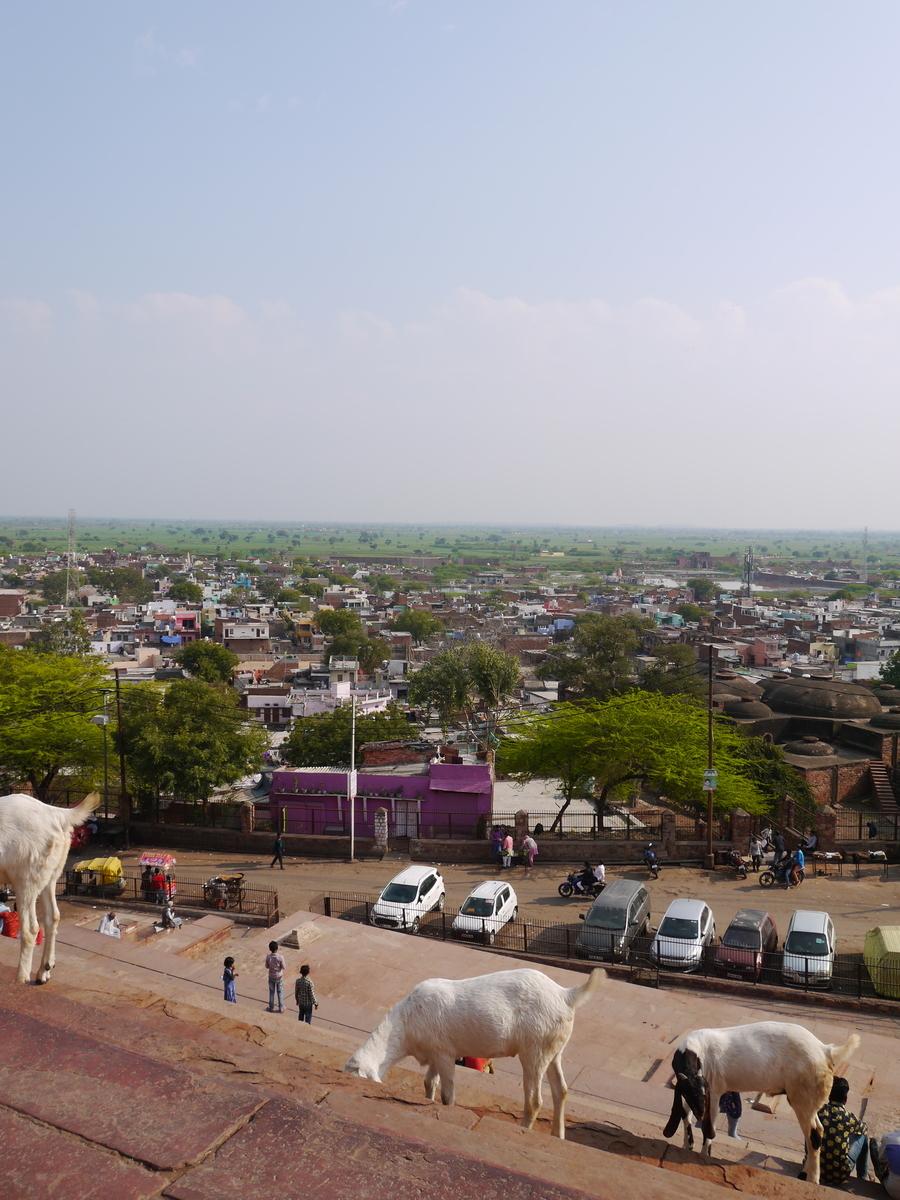 f:id:startGurgaon:20190403142051j:plain