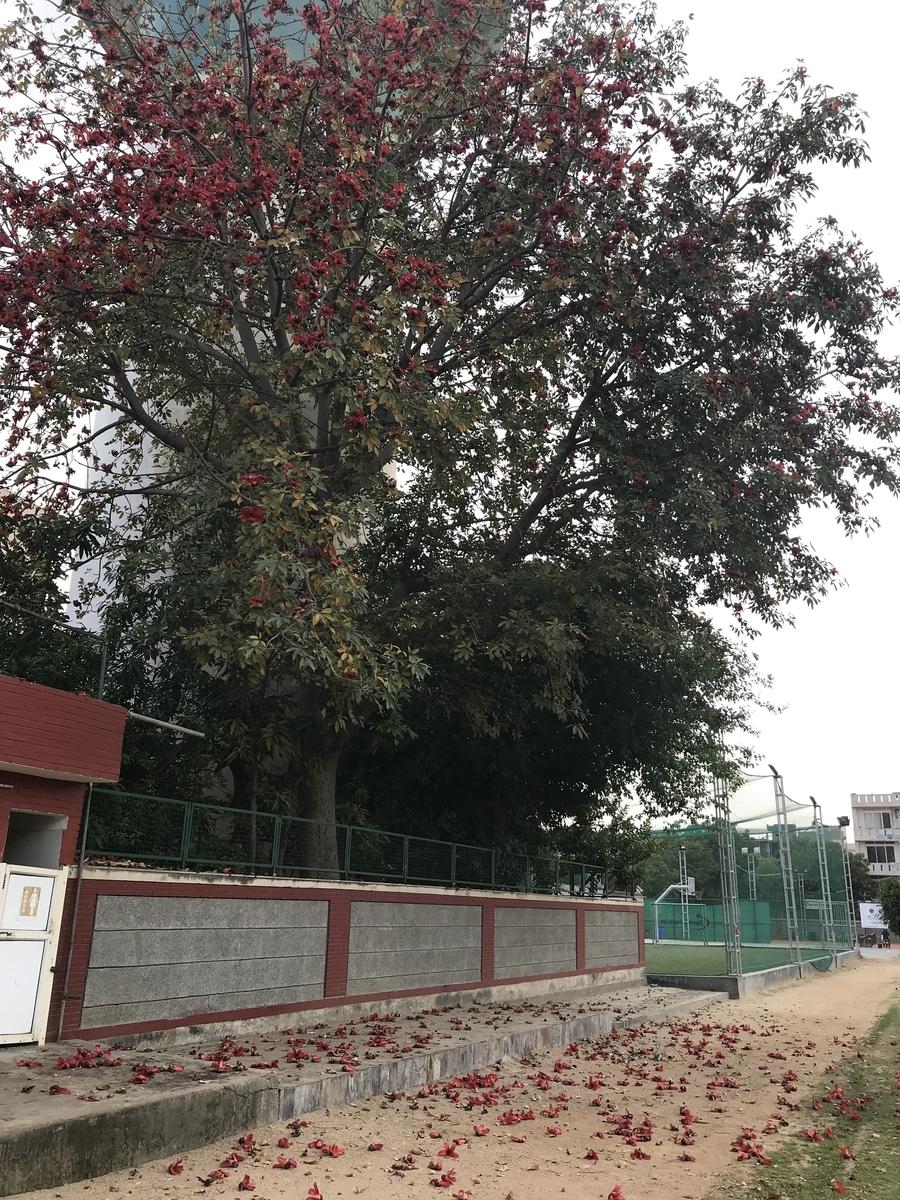 f:id:startGurgaon:20190405130219j:plain