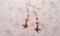 ローズクロス&小鳥のピアス