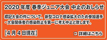 f:id:stelliter:20201227143652p:plain