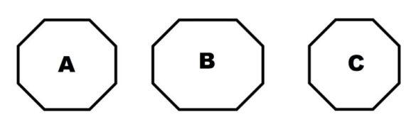 f:id:stelliter:20210304215257j:plain