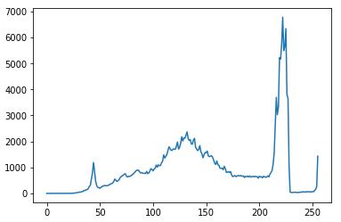 f:id:stjun:20200207002550p:plain