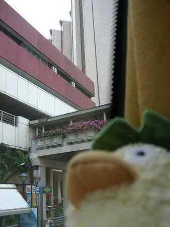 シンガポールはビルの街