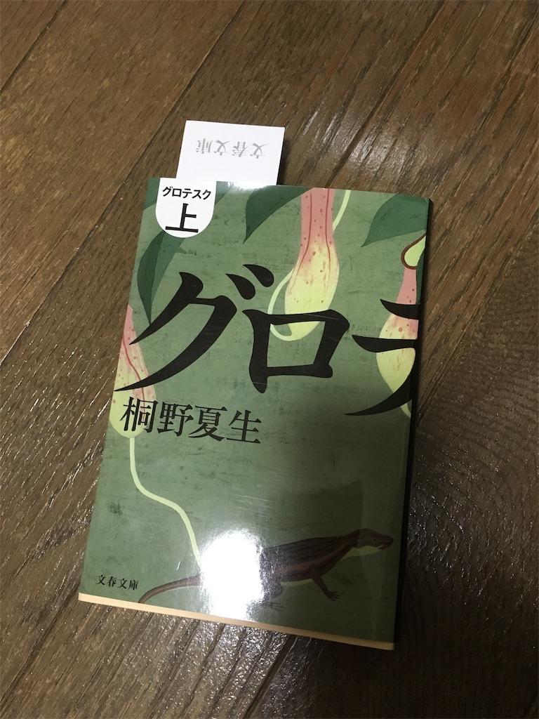 f:id:stone_moon_yusaku:20190110235906j:image