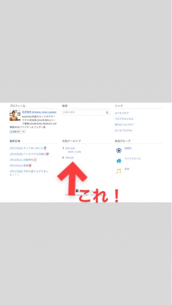 f:id:stone_moon_yusaku:20190119015155j:image