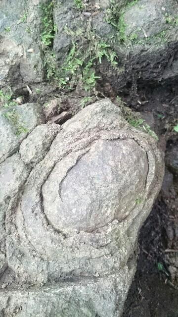 f:id:stonemalachite:20180708153324j:image