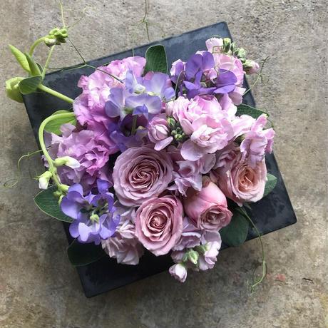 Pink× Lavender ピンク+ラベンダー