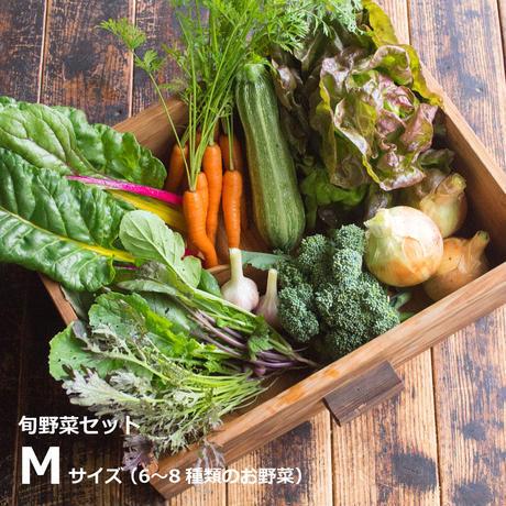 HOMEMAKERS 旬野菜セット