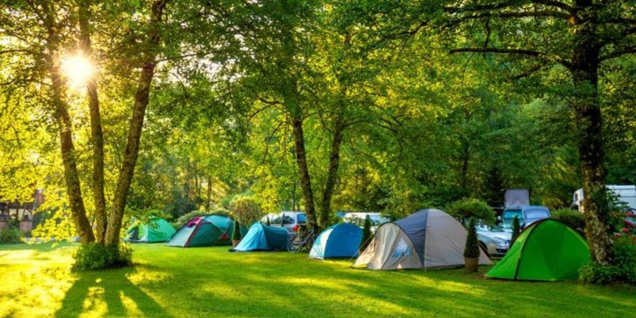 予約システム キャンプ