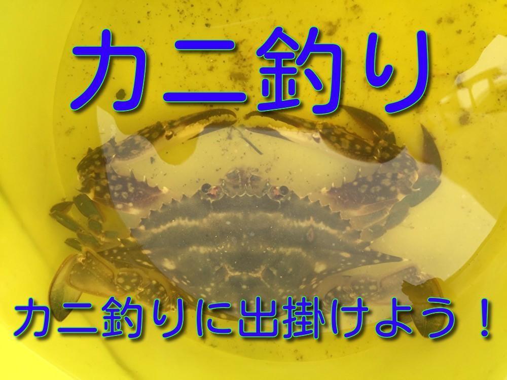 f:id:stormfish:20200912063227j:plain