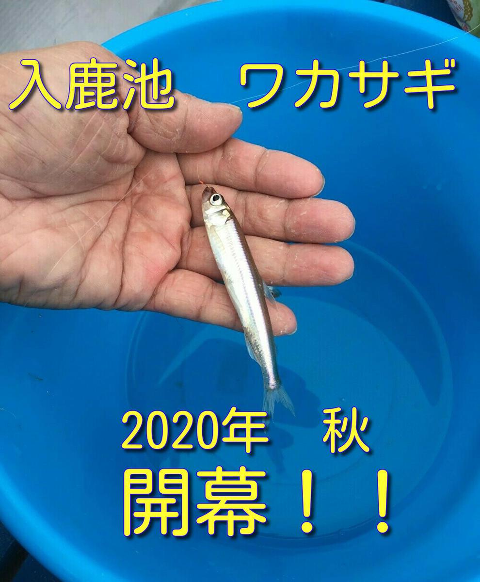 f:id:stormfish:20201024202952j:plain