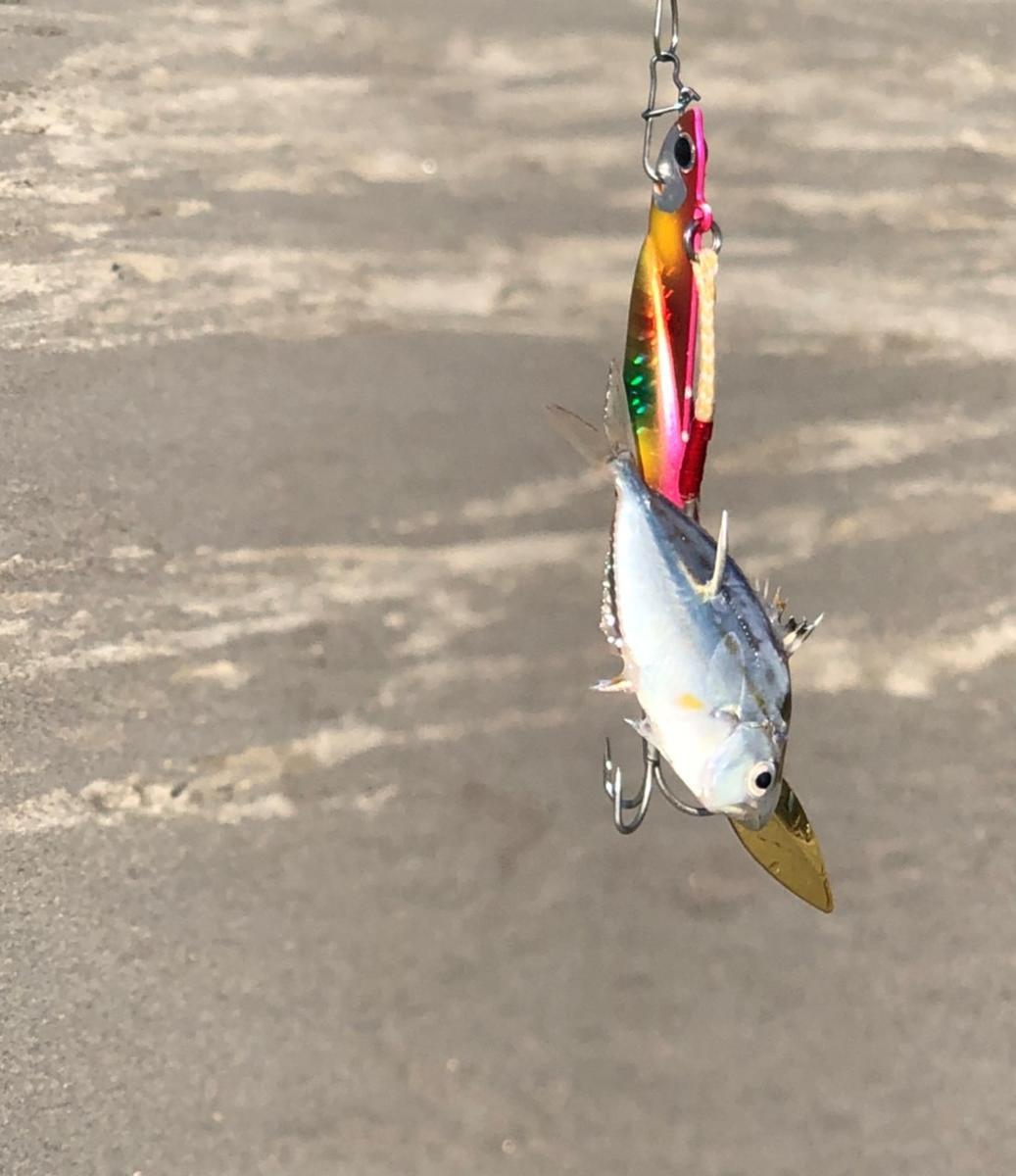 f:id:stormfish:20201203003724j:plain