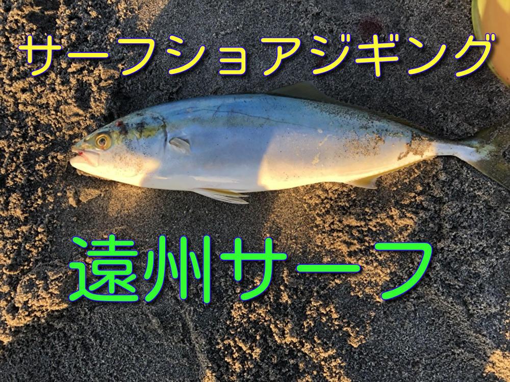 f:id:stormfish:20201203014947j:plain