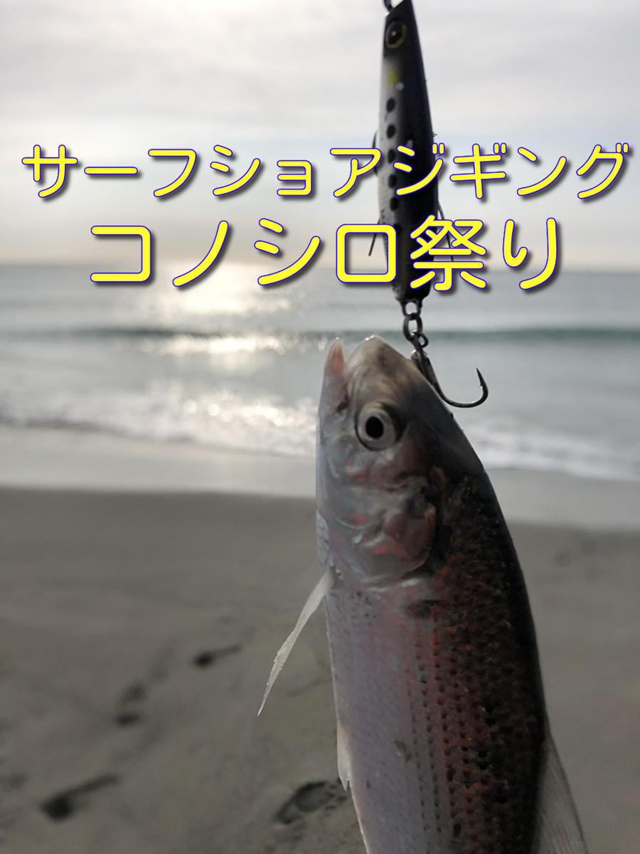 f:id:stormfish:20210104174120j:plain
