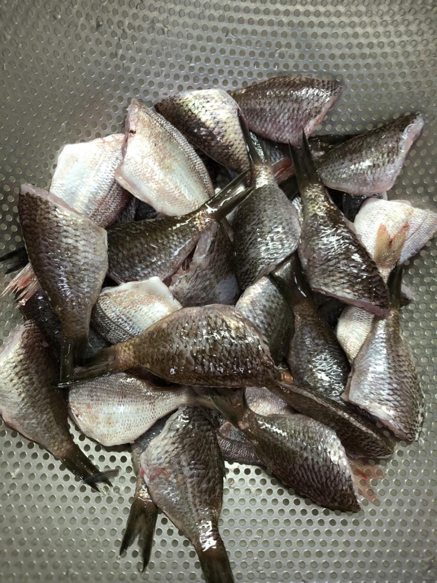 f:id:stormfish:20210930152558j:plain