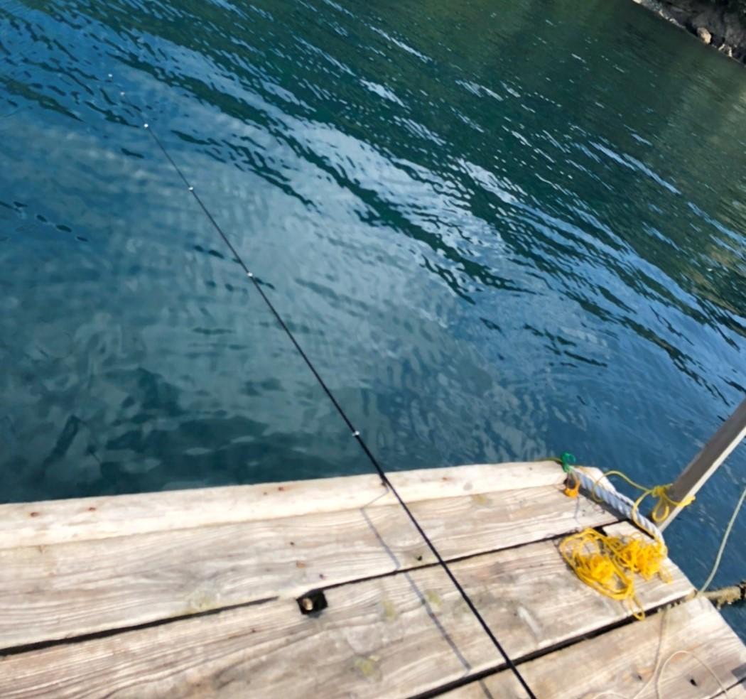 f:id:stormfish:20211007221825j:plain