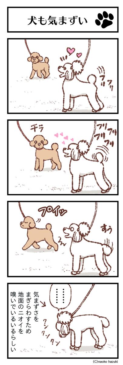 犬もきまずい