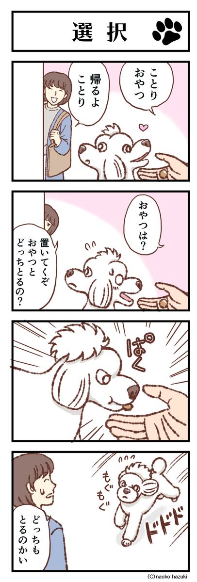 選択【011】