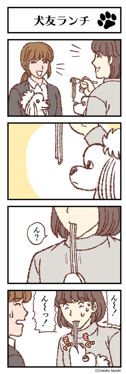 犬友ランチ