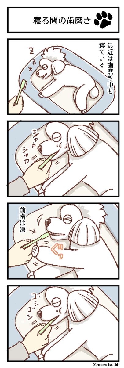 寝る間の歯磨き