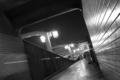 [夜][白黒]Moonlight Stepper