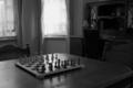 [昼][白黒]白黒の軍勢